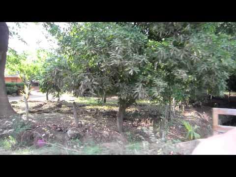 Nicaragua 054