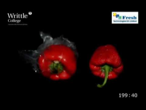 Comparison of Peppers stored in Fresh & Smart Liners versus Unpacked in Ambient
