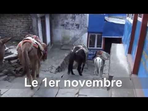 Nepal Part 2 Trekking Pokhara to Ghorepani