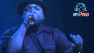 "Ice Cube Performs ""Check Yo Self"" Live In Concert"