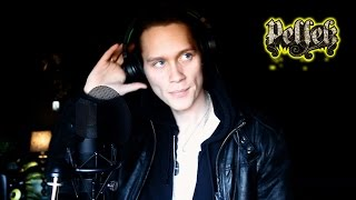 Sia - Elastic Heart [ Cover By. pellek ] with lylics