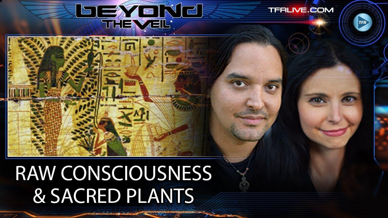 Raw Consciousness, Christ Consciousness and Sacred Plants