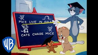 Tom & Jerry   Lessons Learned!   Classic Cartoon Compilation   WB Kids