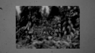 Nathan Shubert - Folds (Official Video)