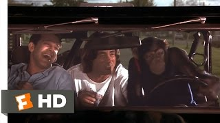 Grandma's Boy (5/5) Movie CLIP - Drive, Monkey, Drive (2006) HD