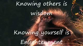 Zen Master Baboon