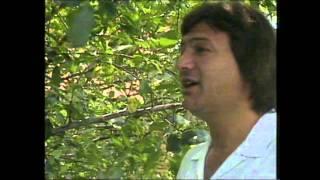 Saban Saulic - Hej Jano Jano (Official Video 1989)