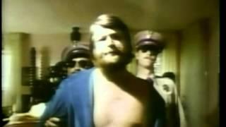 Brian Wilson plus John Belushi & Dan Aykroyd, go surfing. Intro by Brian Wilson