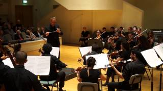 BEETHOVEN 1st Symphony 3rd mov