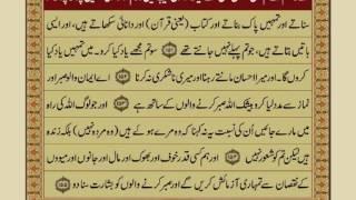 Quran Para 2 with Urdu Translation | Recitation : Mishary Rashid Alafasy width=
