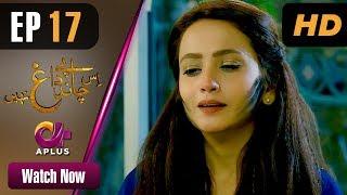 Drama | Is Chand Pe Dagh Nahin - Episode 17 | Aplus ᴴᴰ Dramas | Zarnish Khan, Firdous Jamal width=