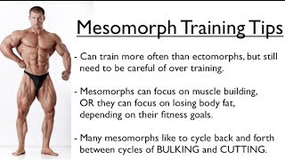 Ectomorph, Endomorph or Mesomorph - Training for YOUR Body Type
