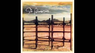 "Gin Blossoms, ""Til I Hear It from You"""