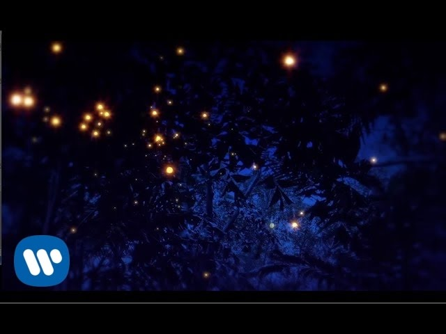 Lyric Video 'Even In The Shadows', de Enya.