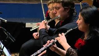 Beethoven: Symphony Nr. 5, 2nd Mvt. / Videnoff - Mannheimer Philharmoniker