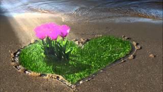 Ljubavi moja tugo-Jesen u mom sokaku