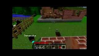 Minecraft granie :D Litewscy Polacy :D