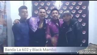Banda La 602 Y Black Mambo - Invitando al 6° Aniversario Black Mambo