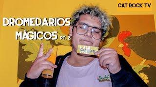 Dromedarios Mágicos Pt. 2 - Cat Rock (Entrevista)