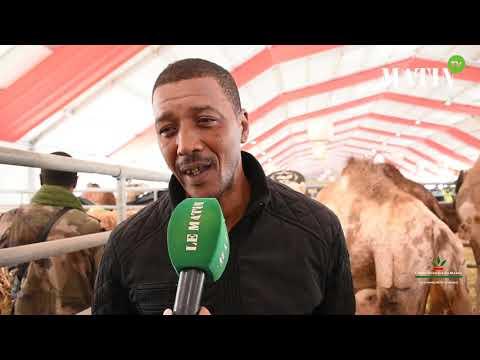 Video : Matin TV en direct du SIAM : découvrez l'élevage des dromadaires