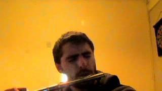 braveheart Flauta Traversa
