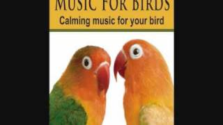 Music For Birds - Calming Music for your Bird