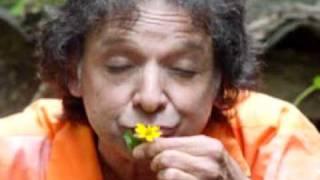 Arnaldo Baptista - LSD
