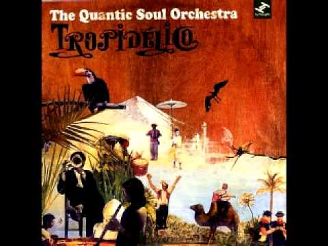 the-quantic-soul-orchestra-she-said-what-ft-j-live-alberto-garey