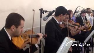 Concerning Hobbits (O Senhor dos Anéis) - Música para casamento SJCampos