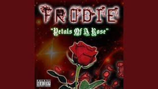 Petals Of A Rose (Intro)