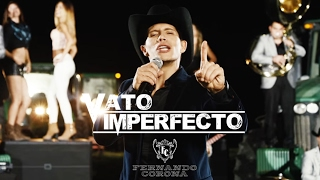 Fernando Corona - Vato Imperfecto Video Oficial