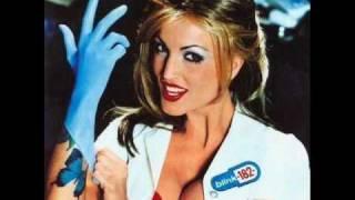 Blink 182 - Untitled Live (Enema Import)