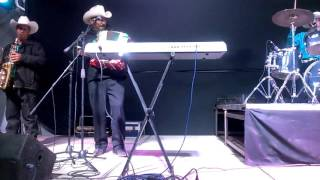 Flechazo Norteño ''La Burra Orejona'' En Vivo cover  Grupo Legitimo
