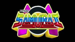 Cumbia De La Verdolaga | Wepa | Exito Sonido Samurai |
