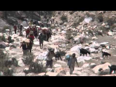 Vite in salita – Uphill Lifes