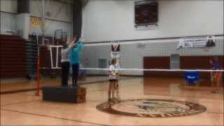 Krista Green Basic Volleyball Skills Video