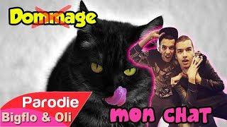 Bigflo & Oli - Dommage (Parodie - Mon Chat)