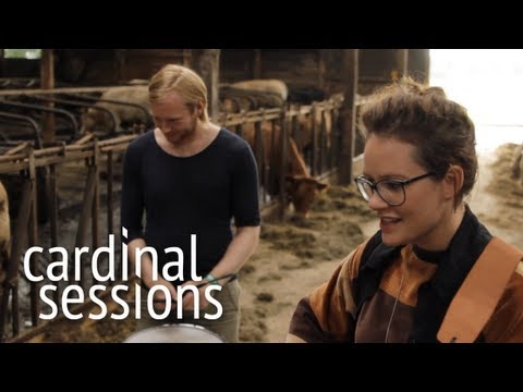 soley-smashed-birds-cardinal-sessions-appletree-garden-special-cardinalsessions