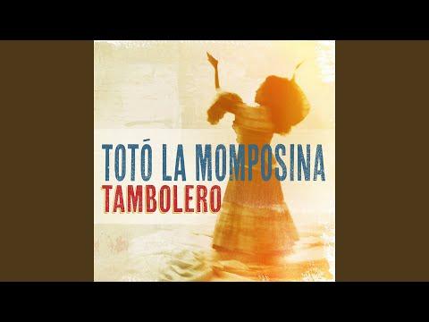 Curura de Toto La Momposina Letra y Video