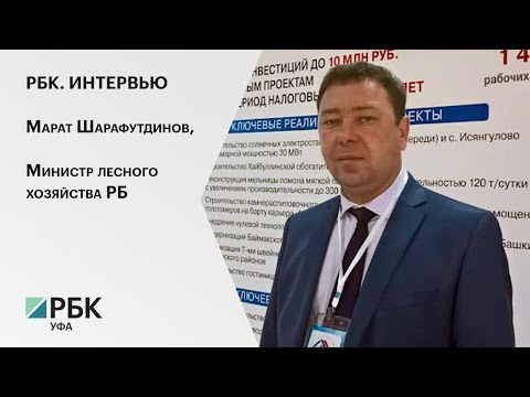Интервью министра лесного хозяйства РБ Марата Шарафутдинова телеканалу РБК-Уфа