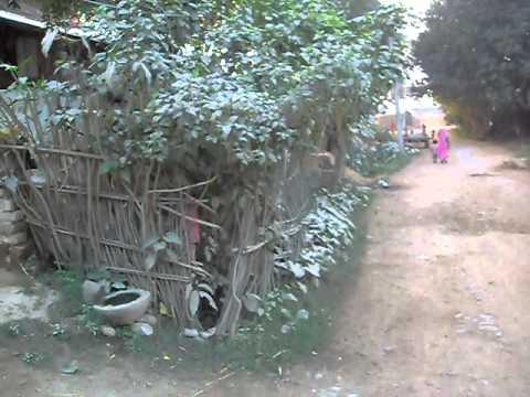 Nepal, Lumbini village