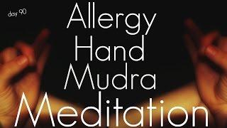 Allergy Relief Hand Mudra Meditation (Day 90)