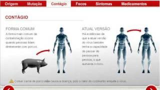 Entenda a Gripe Suína - Portal da Globo G1