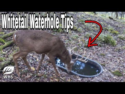 Whitetail Waterhole Buck Magnet Checklist