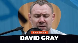 David Gray - Gulls (Radio 1 Live Sessie)