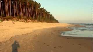 Dzika plaża Dębki 2