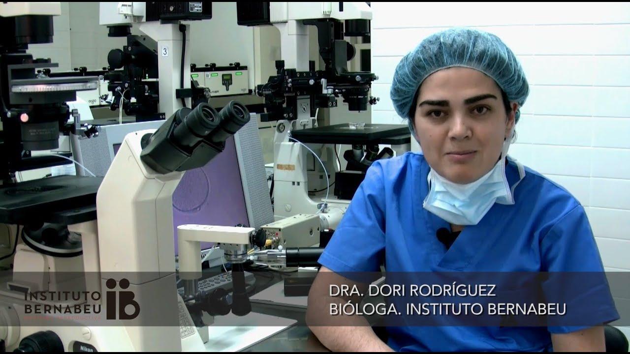 Zweifel, Fragen und Antworten über die Vitrifikation von Eizellen