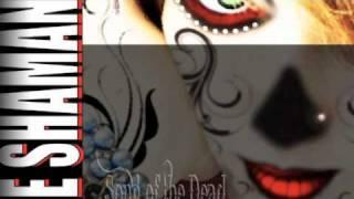 Canción de los Muertos (Psy-Trance Mix) by The Shaman King