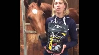 BONUTRON SPORT PRO Audevard pour chevaux