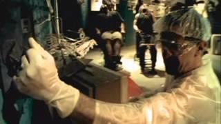 Raimundos - Sanidade - Video Music